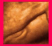 sexe-fille-300x283.jpg
